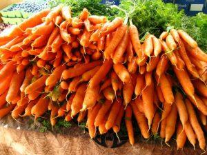 carrots at Stein Mountain Farm in Lytton