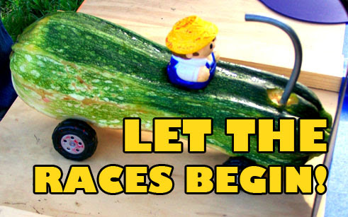 Let the Zucchini Races Begin