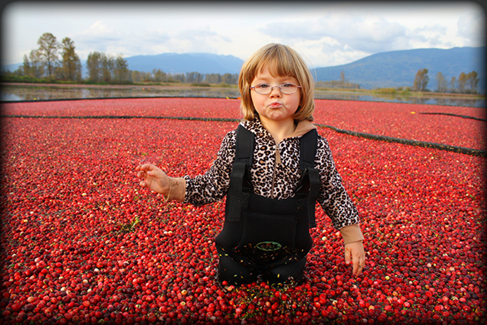 Child in Cranberry Field